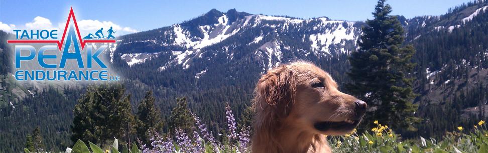 Tahoe Peak Endurance